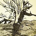 Tree Trunk By The Sea by Daniel P Cronin