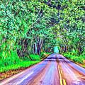 Tree Tunnel Kauai by Dominic Piperata