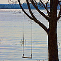 Tree With A Swing by Les Palenik