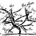 Tree Yes Tree by Go Van Kampen