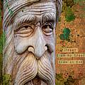 Treebeard by Gillian Singleton