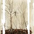 Treeman by Ken Meyer