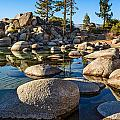 Trees And Rocks by Jamie Pham