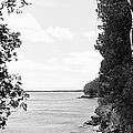 Trees At The Lakeside, Cave Point by Panoramic Images