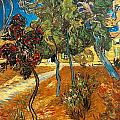Trees In The Asylum Gardens by Vincent Van Gogh