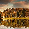 Trees Lining The Waters Edge Reflected by John Short
