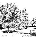 Trees by Masha Batkova