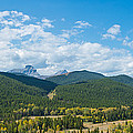 Trees On Canadian Rockies Along Route by Panoramic Images
