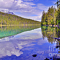 Trees Reflected At Valley Of The Five Lakes by Tara Turner