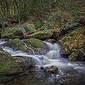 Tremont Flow by David Waldrop