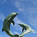Tresco Dolphins by Alex Cassels