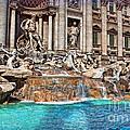 Trevi Fountain by Hanny Heim