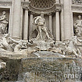 Trevi Fountain In Rome by Deborah Smolinske