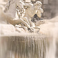 Trevi Fountain by Natalie Rotman Cote