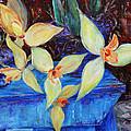 Triangular Blossom by Xueling Zou