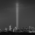 Tribute Lights Bw by Michael Ver Sprill