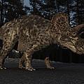 Triceratops by Ramon Martinez