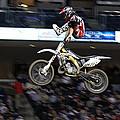 Trick Rider by Karol Livote