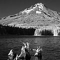 Trillium Lake by Ken Dietz
