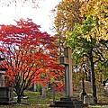 Trinity Cemetery by Sarah Loft