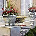 Trinity Geraniums by Robin Roberts