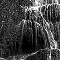 Trinity Waterfall In Monasterio De Piedra Park Bw by RicardMN Photography