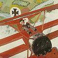 Triplane by Richard La Motte