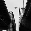 Triple Bridges by Mark McDaniel