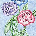 Triple Roses by Bill Richards