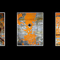 Triptych Old Metal Series by Ann Powell