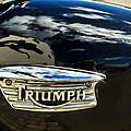 Triumph by Susie Peek