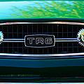 Triumph Tr 6 Grille Emblem by Jill Reger