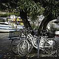 Trois Bikes by Timothy Hacker