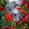 Tropic Spirits - African Greys by Carol Cavalaris