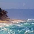Tropical Beach Oahu Hawaii by Scott Cameron
