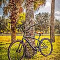 Tropical Bicycle by Debra and Dave Vanderlaan