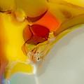 Tropical Bird by Omaste Witkowski
