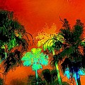 Tropical Blend by Barbara Chichester