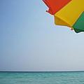 Tropical Breeze by Megan Cohen
