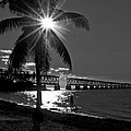 Tropical Bridge In Black And White by Photos By  Cassandra