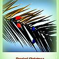 Tropical Christmas by Susanne Van Hulst