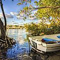 Tropical Dreams by Debra and Dave Vanderlaan