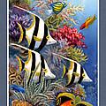 Tropical Fish A by Charles Kim