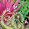 Tropical Garden by Janet Summers-Tembeli