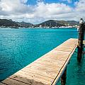 Tropical Harbor by Kristopher Schoenleber