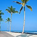 Tropical Island Beach And Sidewalk Art Prints by Valerie Garner
