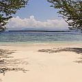 Tropical Island Beach by Marcos Welsh