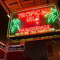 Tropical Isle Nola Style by Tim Stanley