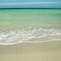 Tropical Ocean Beach by Charmian Vistaunet
