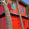 Tropical Orange House Palm Trees - Whoa Now by Rebecca Korpita